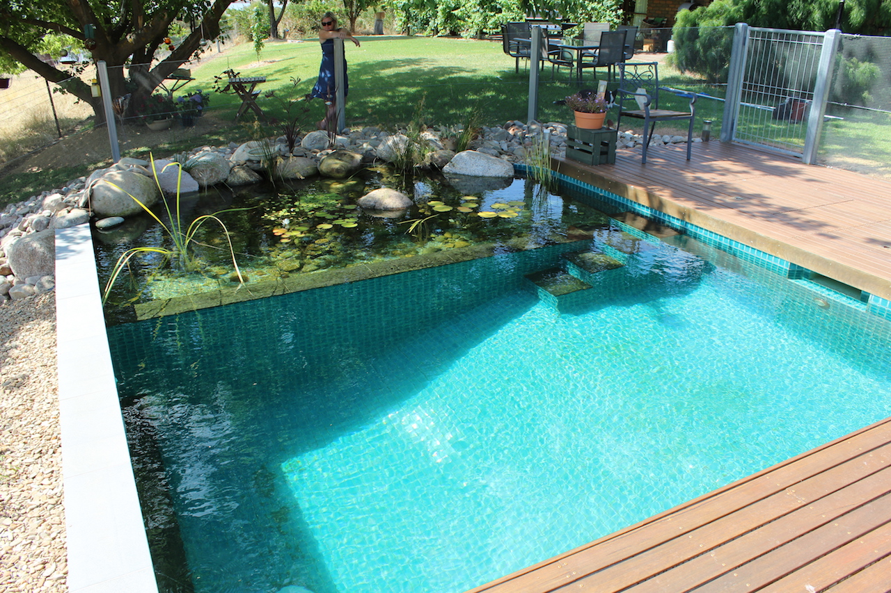 Our projects natural swimming pools australia for Pictures of a pool