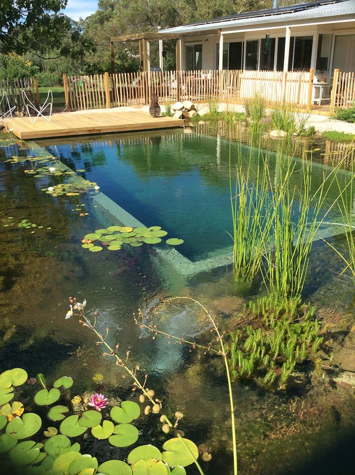 Our projects natural swimming pools australia for Sustainable swimming pools